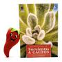 Livro Coleção Enciclopédia De Suculentas E Cactos Volume 4