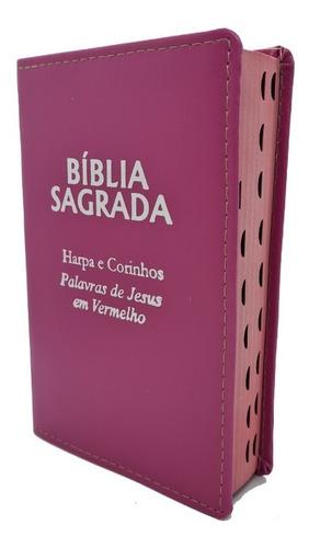 Bíblia Sagrada Cores Luxo Presente