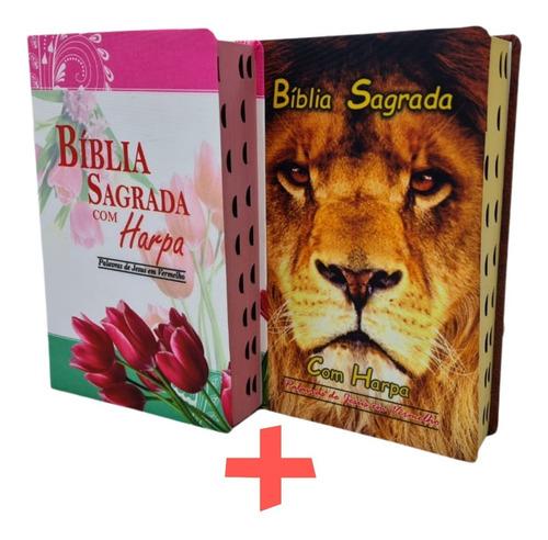Bíblia Sagrada Do Casal Com Harpa E Corinhos