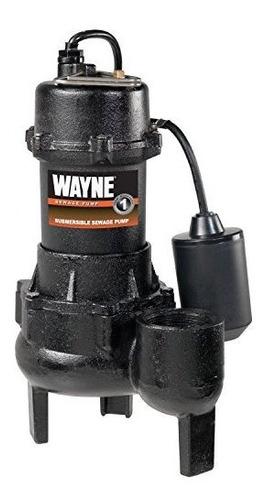 Bomba De Aguas Residuales De Hierro Fundido Wayne Rpp50 Con