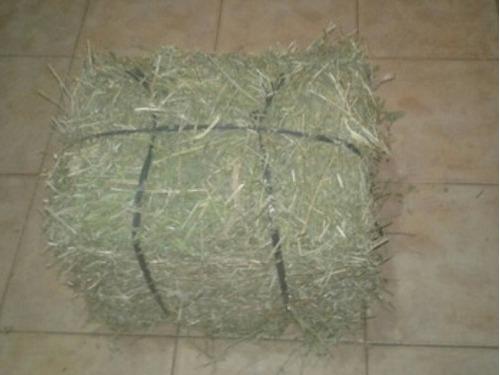Heno Alfalfa Alimento,conejos, Cobayos X4kg Caba. Merc Envío