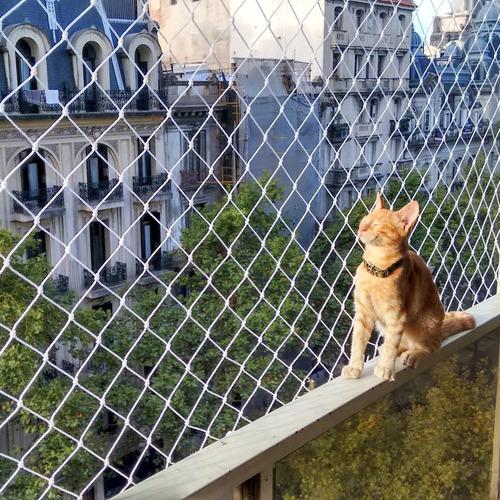 Kit Autoinstalable Red Protección Para Gatos Balcón Ventanas