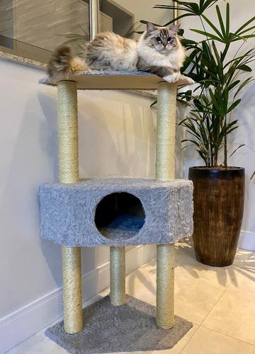 Arranhador Gato Infinity Gigante
