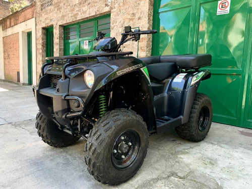 Kawasaki Brute Force Monster 300