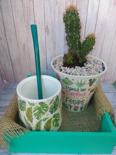 Mate + Bombilla + Cactus