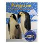 Tudo Sobre Mamães E Filhotes: Pinguins