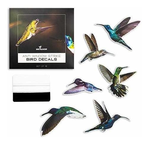Bird Blinder 12 Pegatinas De Ventana De Colibrí: 6 X 8 Pulga