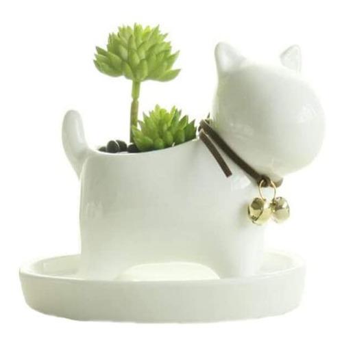 Planta Suculenta Animal Flowerpot Decorado Home Desk (d 8492