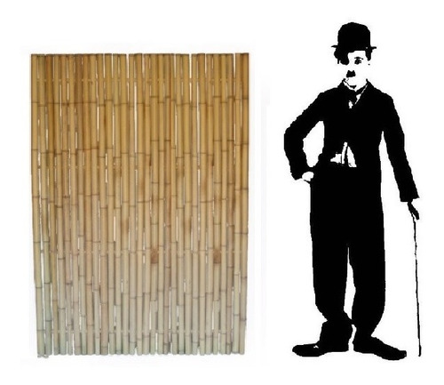 Cañas. Bambu Tacuara Pergola Cerco Decoracion. 1.2 X 1 Metro