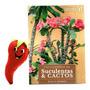 Livro Coleção Enciclopédia De Suculentas E Cactos Volume 6