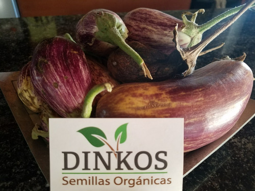 Semillas Organicas Dinkos Combo 6 Ajies Vendedor Oficial