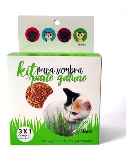 Hierba Gatuna, Kit De Pasto Para Gatos, No Es Catnip