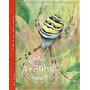 Livro Infantil Aranha: Diário Animal Editora Zastras
