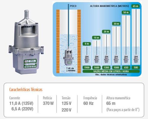 Bomba Submersa ( Sapo ) 8.0 370w Bluma