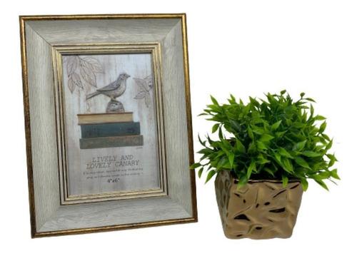 Kit Decorativo Com Vaso Cobre Com Planta E Porta Retrato