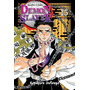 Demon Slayer / Kimetsu No Yaiba Volume 15