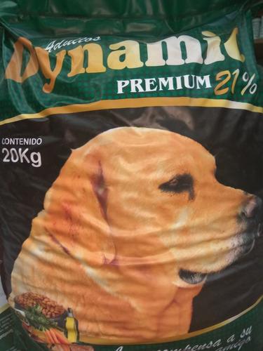 Ración Para Perros, Dynamic Premium 21% Prot X 20 Kgs
