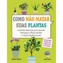 Como Não Matar Suas Plantas Cuidados Essenciais