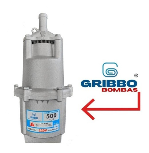 Bomba Sapo Mod 500 Saída 3/4 220v Produto De Qualidade Recon