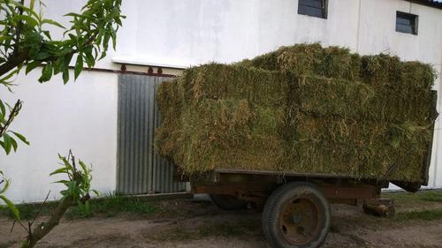Fardos De Alfalfa Y Mezcla Envios Factura Oficial