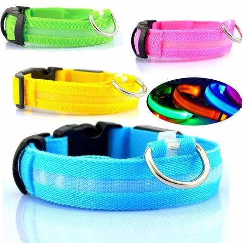 Correa Collar Arnes Led Para Mascota En S M L Varios Colores