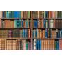 Fundo Fotográfico Tecido Para Live Biblioteca 2, 20m X 1, 50m
