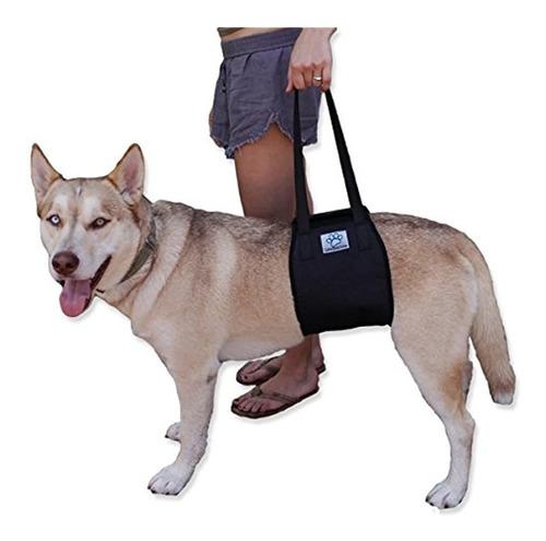 Vet Approved Dog Lift Arnes De Soporte Para Ayuda Canina Li
