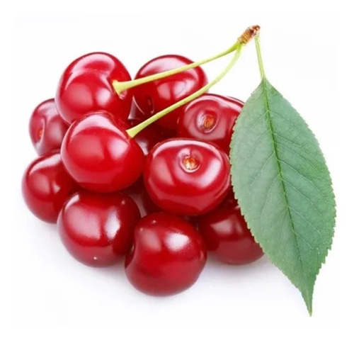 Frete Grátis Cereja Americana / Cranberry - Sementes Fruta