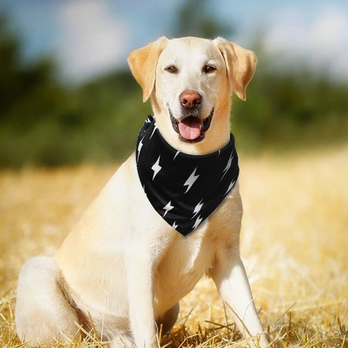 Pañoleta Para Perro, Para Todas Las Razas.