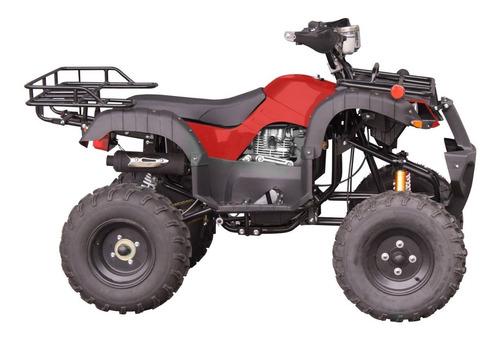 Quadriciclo Atv250cc Freio A Disco Gasolina P Elétrica 4t