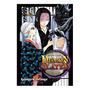 Manga: Demon Slayer: Kimetsu No Yaiba Vol.16 Panini