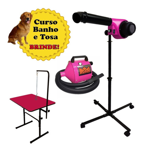 Kit Profissional Pet Shop Secador Soprador Mesa Banho E Tosa