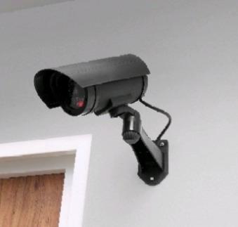 Cámara De Seguridad Falsa Betterware