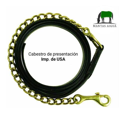 Cabestro (cabresto) Presentación Cuero Y Cadena Imp. Usa