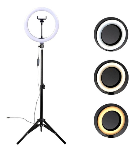 Ring Light Luz Led Iluminador Selfie Make Live Foto Tripé