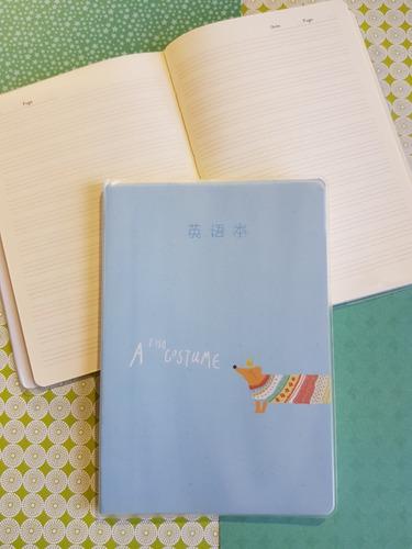 Cuaderno Ferrocarril Sketchbook Forro Plastico Rayados