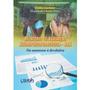 Livro Relatório De Avaliação Neuropsicopedagógica (ran)
