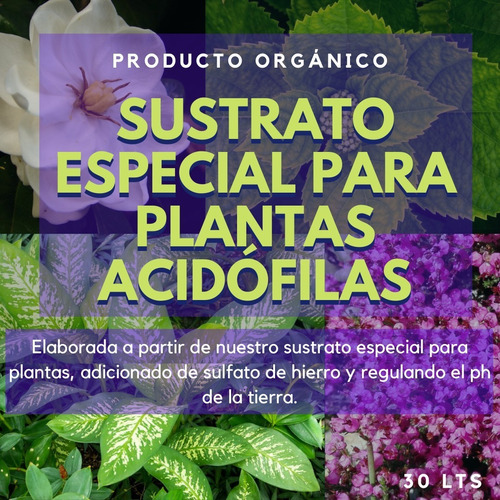 Tierra Tipo Sustrato Especial Para Plantas Acidofilas Jardín