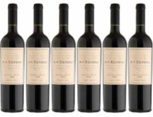 Dv Catena Pinot Noir Pinot Noir Caja X 6