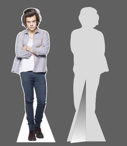 Figura Harry Styles  Tamaño Real