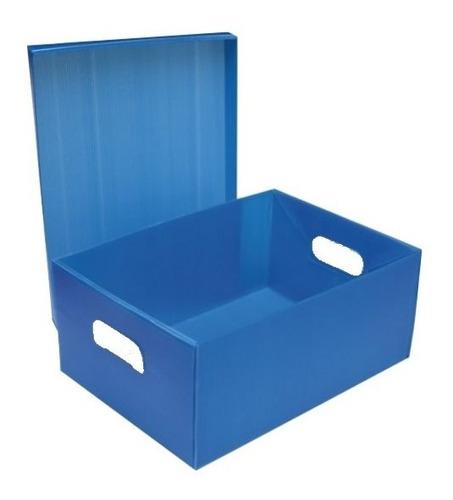 Caja Archivo Plastica Con Tapa En Carton Plast