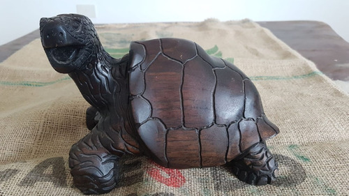 Tortuga De Madera Maciza De Galapagos