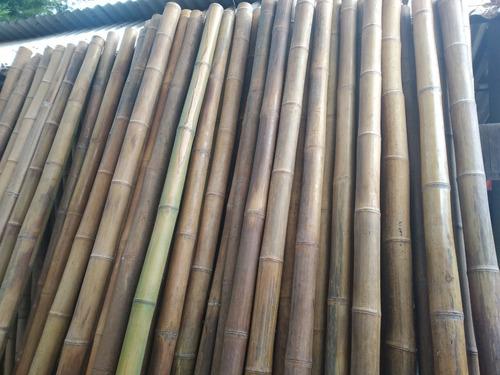Cañas. Bambu Tacuara Pergola Cerco Mejor Precio. 2.5 Gruesas