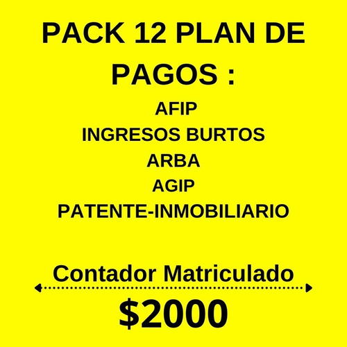 Planes De Pago Afip- Contador Publico Online - Autonomos