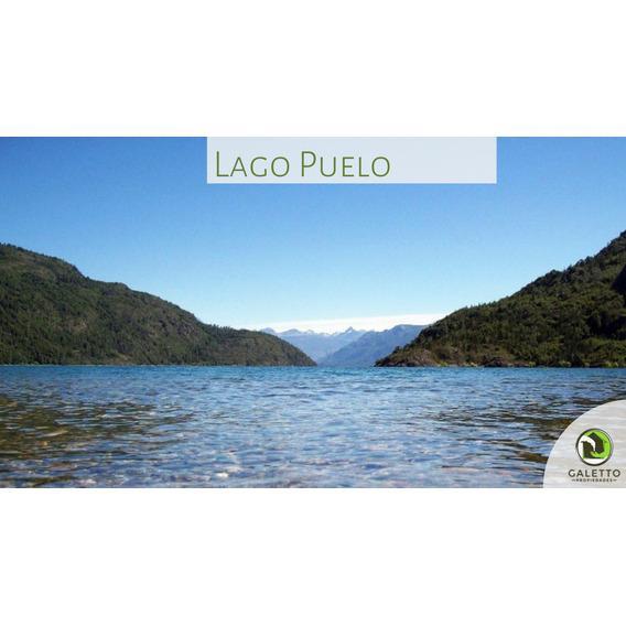 Venta - Hectáreas - Lago Puelo