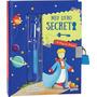 Livro Diário Meu Livro Secreto Pequeno Príncipe C/ Caneta
