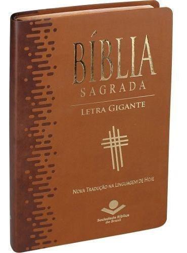 Biblia Sagrada Na Linguagem De Hoje (ntlh) Com Letra Gigante