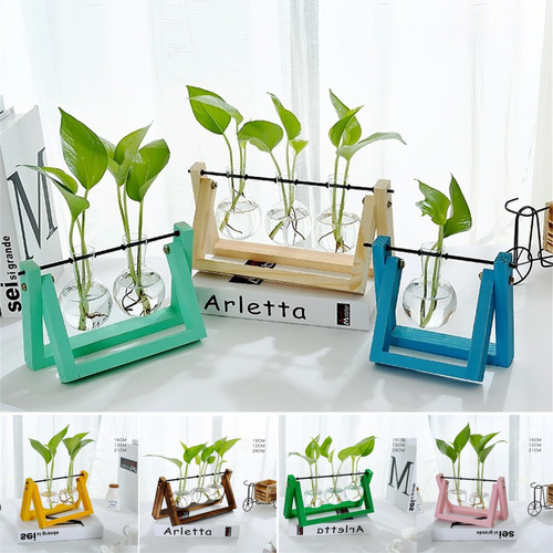 Vaso De Flor De Vidro Transparente Hidropônico Planta De Ar