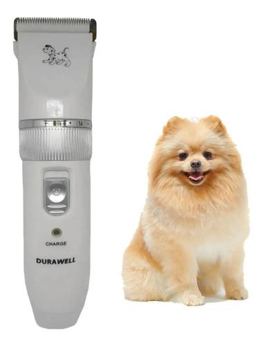 Máquininha De Tosar Pets Profissional  Cães Poodle Yorkshire