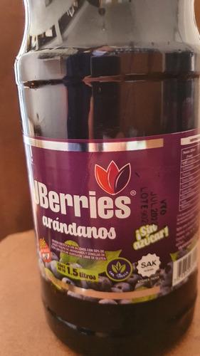 Jugo De Arandanos Light X 1.5 L. X 6 U. Con Stevia Promocion